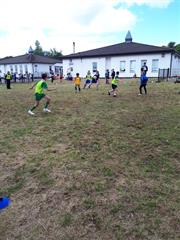 Hollybush world cup 2018