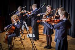 Hollybush String Musicians