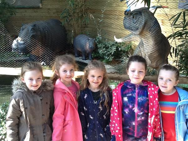 Primary 3 Trip to Tropical World