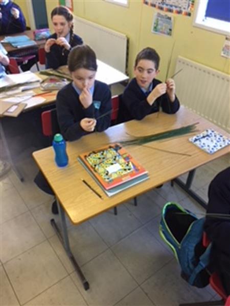 St Brigid's Day in Mr O'Connor's class
