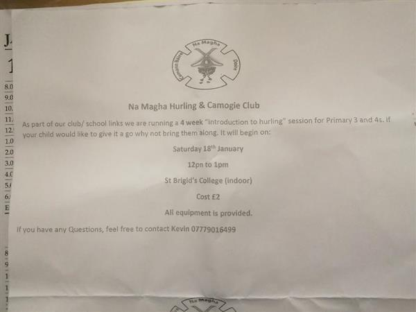 Na Magha Introduction Hurling & Camogie for P3&4